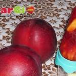 Ghiaccioli alla frutta fatti in casa con succo di amarena e pesca