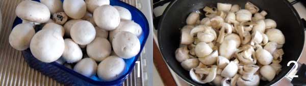 funghi-champignon