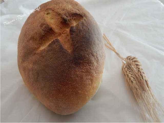 pane di altamura fatto in casa