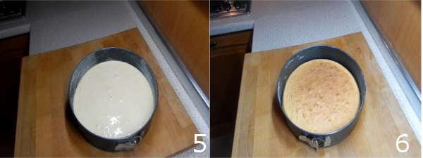 torta fredda 5 6