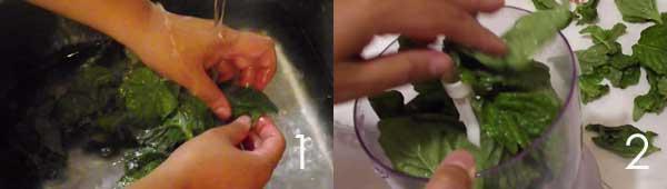 sale-al-basilico-lavaggio